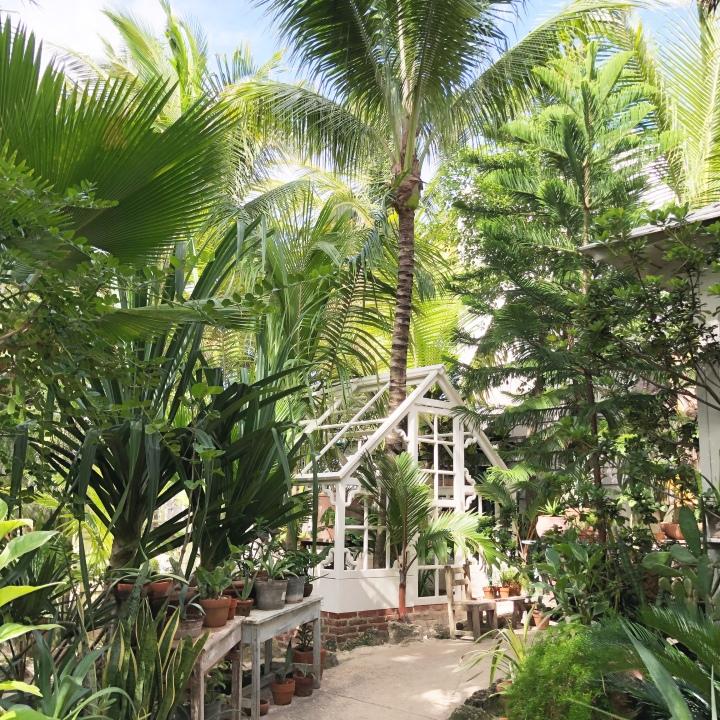 {Entryway for Posada Margherita in Tulum}